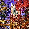 Michigan State University Beaumont Tower by John McGraw