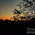 Michigan Sunrise 01 by Thomas Woolworth