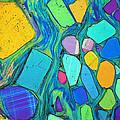 Art And Geology by Bernardo Cesare