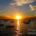 Mid Summer Sunset Over The Island by Dora Sofia Caputo Photographic Design and Fine Art