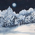 Midnight Frost by Ann Sokolovich
