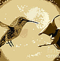 Midnight Hummingbird by Carol Groenen