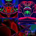 Midnight Velvet by Lorles Lifestyles
