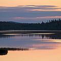 Midsummer Night's Dream by Heiko Koehrer-Wagner