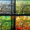 Midwest Seasons Collage by Ellen Cannon