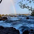 mighty Zambezi by Martin Michael Pflaum
