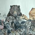 Mika Animals by Tamir Barkan