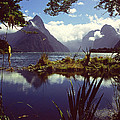 Milford Sound In New Zealand's Fiordland National Park by Alex Cassels