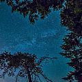 Milky Way Framed Trees by James Wheeler