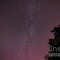 Milky Way In Nj by Michael Ver Sprill
