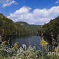 Mill Creek Lake - D001303 by Daniel Dempster