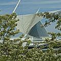 Milwaukee Art Museum Through Flowered Trees by Devinder Sangha