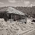 Miner's Shack - Comet Ghost Mine - Montana by Daniel Hagerman
