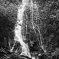 Mingo Falls by Harold Rau