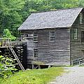 Mingus Mill In Tennessee by Mary Koval