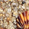 Mini Beach Vacation by Carol Groenen