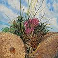 Mini Cactus Garden In Rock by Brian  Pinkey