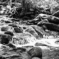 Mini Cascades Smoky Mountains Bw by Cynthia Woods