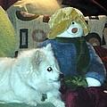 Miniature American Eskimo And Snowman by Nicki Bennett