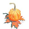 Miniature Pumpkin On Oak Leaf Still Life by Dominic White
