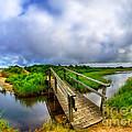 Mink Meadow Bridge by Mark Miller