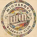 Minnesota Twins Logo Vintage by Florian Rodarte