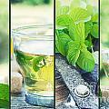 Mint Tea Collage by Mythja  Photography