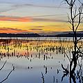 Mirror Lake by Guido Montanes Castillo