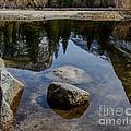 Mirror Lake Threesome 2 Yosemite by Terry Garvin