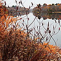 Mirror Smooth River by Expressionistart studio Priscilla Batzell