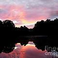Mirrored In The Lake by Scott B Bennett