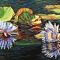 Mirrored Lilies by Jane Girardot