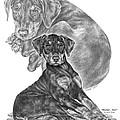 Mischief ... Moi? - Doberman Pinscher Puppy  by Kelli Swan