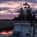 Miss Sue At Sunrise by Paula OMalley