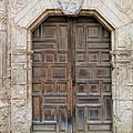 Mission Concepcion Door  by David and Carol Kelly