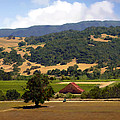 Mission Meadows Solvang California by Kurt Van Wagner