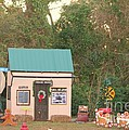 Mississippi Christmas 5 by Michelle Powell