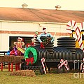 Mississippi Chrsitmas 12 by Michelle Powell