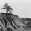 Mississippi Erosion, 1936 by Granger