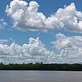 Mississippi River by Beth Vincent