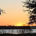 Mississippi Sunset 11 by Michelle Powell
