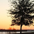 Mississippi Sunset 14 by Michelle Powell