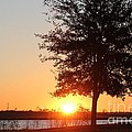 Mississippi Sunset 3 by Michelle Powell