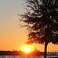 Mississippi Sunset 4 by Michelle Powell