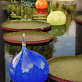 Missouri Botanical Garden Six Glass Spheres And Lilly Pads Img 2464 by Greg Kluempers