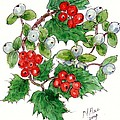 Mistletoe and Holly Wreath by Nell Hill