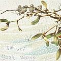 Mistletoe In The Snow by English School