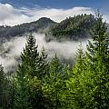 Mists Among The Hills by Greg Nyquist