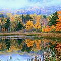 Misty Autumn Pond  by Roupen  Baker
