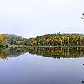 Misty Day Reflection by Steve Samples